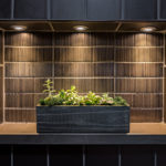 built-in-shower-niche-LED-accent-light-succulent-plant-master-bath