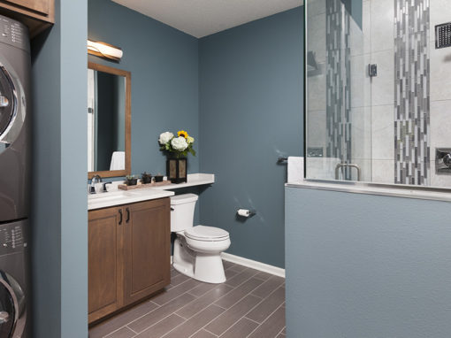 Downtown Condo Bathroom with Laundry