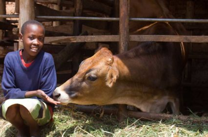 Image-Courtesy-Heifer-International